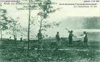 pichelswerder-1908-heerstrasse-im-bau
