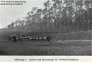 1914-dbz-abb-4