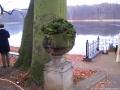 2005-12-04-sonntag-1-weihnachtsmarktlauf-jagdschloss-014-klein