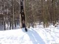 2013-03-23-postfenn-mit-barbara-und-capy-020-klein