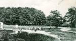 1906-schildhorn-a