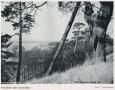 1950-schmook-nach-seite-144-lieper-bucht