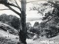1908-dachsgrund-a
