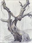 Linden Galerie 03: Schildhorn