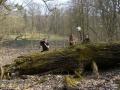 2009-april-04-filmaufnahmen-bilderbuch-grunewald_21-klein