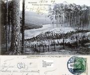 1907-gel-1909-10-17-waldweg-nach-schildhorn-vmtl-dachsberge-klein-an-ludwig-von-pechmann