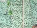 1891-kiessling-jagen-90-dahlemer-feld
