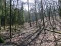 2012-03-25-09-klein