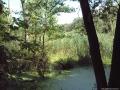 Fließwiese Ruhleben