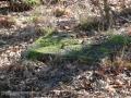 2011-03-06-cimg1970-klein
