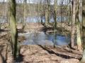 2011-03-06-cimg2082-klein