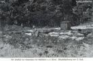 1890-friedhof-der-namenlosen-klein