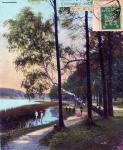 1925-06-16-grunewaldsee-birke-klein