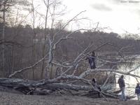 2012-12-30-grunewaldsee-jagdschloss-paulsborn-016-klein