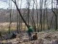 2009-april-04-filmaufnahmen-bilderbuch-grunewald_48-klein