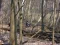2009-april-04-filmaufnahmen-bilderbuch-grunewald_56-klein