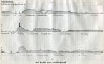 1902-berdrow-grunewald-profile-klein