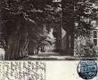 1912-jagdschloss-buchenallee-klein