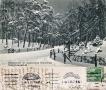 1914-01-09-weg-zum-jagdschloss-klein