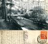 1918-jadschloss-grunewald-mit-kutsche-klein