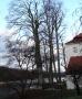 2012-12-30-grunewaldsee-jagdschloss-paulsborn-092-klein