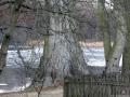 2012-12-30-grunewaldsee-jagdschloss-paulsborn-093-klein