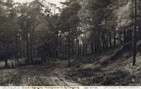 1914-07-15-paulsborn-klein