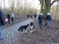 2012-12-30-grunewaldsee-jagdschloss-paulsborn-073-klein