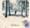 1901-durchblick-auf-das-jagdschloss-klein