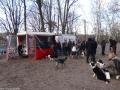 2012-12-30-grunewaldsee-jagdschloss-paulsborn-019-klein