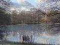 2012-12-30-grunewaldsee-jagdschloss-paulsborn-061-klein