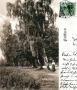 1909-landschaft-bei-hundekehkle-klein