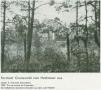 1932-schmook-wildpark-grunewald-1