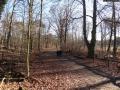 2012-12-30-grunewaldsee-jagdschloss-paulsborn-001-klein