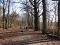 2012-12-30-grunewaldsee-jagdschloss-paulsborn-002-klein