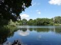 2012-06-17-126-hundekehle-klein