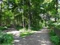 2012-06-17-215-hundekehle-klein
