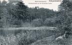 1910-waldlandschaft-krumme-lanke-rsoa