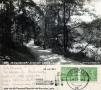1951-krumme-lanke-weg