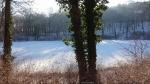 2016-01-18-109-murellensee-klein