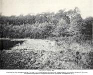 1908-03-00-pechsee
