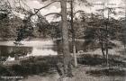 1914-ca-pechsee