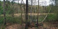 2006-04-30-laufwanderung-2-bilder-zusammengesetzt-klein