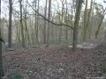 2007-02-03-cimg2754-klein