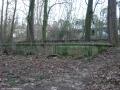 2007-02-03-cimg2757-klein