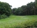 2012-07-29-dsc-032-klein