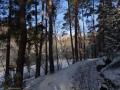 2016-01-18-sausuhlensee-dsc03403-klein