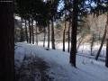 2016-01-18-sausuhlensee-dsc03406-klein