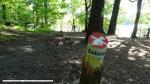 2015-05-13-schlachtensee-tage-vor-hundeverbot-029-klein