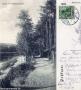 1909-schlachtensee-uferweg-klein